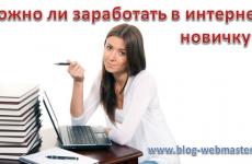 Можно ли заработать в интернете новичку?